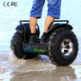力モーター車輪の電気スクーターの手段