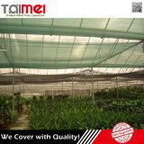 Panno agricolo dello schermo dell'HDPE ritrattabile di colore verde