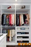 Шкаф с подвижной лестницы дизайн (одеждой W-65)
