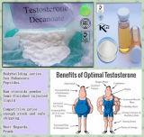Être Brave et Stronger Testosterone Decanoate/Test Deca