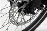 20 pulgadas de bicicleta eléctrica plegable con la batería de litio Oculto (JB-TDN10Z), EN15194 Aproved