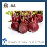 100% naturel extrait de colorant rouge betterave
