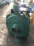 Scm-22 Bomba de agua centrífuga (0,37 KW/0.5HP) para el riego
