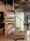 Projeto de vidro de aço moderno da escadaria da espiral dos trilhos da escada