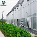 Выбросов парниковых газов из поликарбоната для растущих цветов зеленый дом