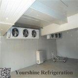 Painel do quarto frio da alta qualidade do fechamento da came para o armazenamento dos vegetais e das frutas