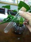 El tubo de sustitución de la cámara de vidrio Pyrex