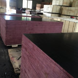 La película de la capa del color del negro de la chapa de la base del álamo hizo frente a la madera contrachapada (12X1250X2500m m)