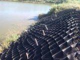 precio de fábrica Geocell HDPE para muro