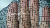 Anti rete della grandine di Meyabond per la serra 3X8mm