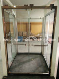 De Deur van het Glas van de douche met de Grote Rol van het Roestvrij staal (BR-502)