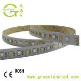 Fita LED à prova de venda por grosso de 120 LEDs RGB de fileiras duplas/M 5050 Faixa LED 600LEDs