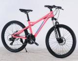 """24의 26 """" 알루미늄 합금 현탁액 21 속도에 의하여 주문을 받아서 만들어지는 산악 자전거"""