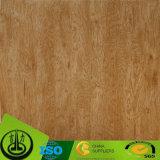 Papel de madeira da melamina da grão como o papel decorativo para o assoalho