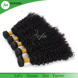 Hot Sale Indian Curly Dyeable aucune chute de cheveux vierges non traités
