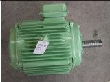 Horizontal Wind Turbineのための低速Permanent Magnet Generator