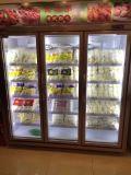 Стеклянные двери холодильник морозильник