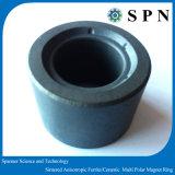 Magnete sinterizzato di ceramica del ferrito