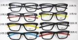 많은 디자인을%s 가진 Hotsale 광학적인 Tr 90 눈 착용 유리