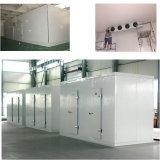 Frische Frucht-Gemüse-vorfabrizierter modularer Kühlraum für Verkauf