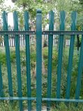 Tipo euro cerca del jardín del hierro labrado (TS-L49) de la venta caliente