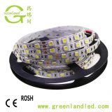 Indicatore luminoso di striscia di RoHS 12V 24V 60LEDs 5050 LED del Ce