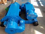 Double élévateur de longeron 10 tonnes pour la double grue de poutre