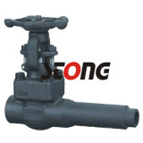 API602 Forge Steel Gate Valve con C/W Pup Pipe