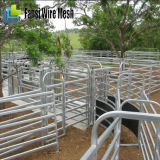 Panneaux utilisés portatifs lourds de corral de cheval