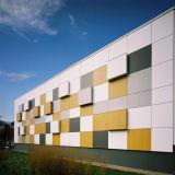 panneaux de revêtement décoratifs de mur d'épaisseur de 8 millimètres