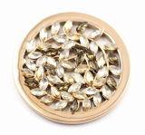 로켓 펀던트 형식 보석과 맞는 입방 돌을%s 가진 올리브 잎 동전 격판덮개