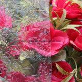 Vidro do Windows Diamond, Flora, Karatachi, Vidro Estampado