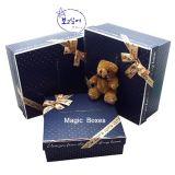 Boîtes-cadeau de papier de carton de qualité (FLB-9331)