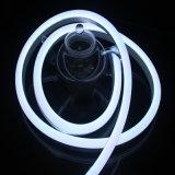 IP65를 가진 최고 밝은 LED 네온 밧줄 빛