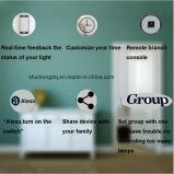 Lavoro con l'interruttore di vetro 90~250V della parete dell'indicatore luminoso di tocco del Regno Unito 1gang 2gang 3gang del comitato dell'interruttore astuto Wi-Fi del Amazon Alexa