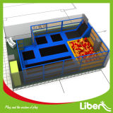 Sosta dell'interno di salto libera del trampolino della base di grande stile del castello del capretto