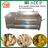 Machine van de Was en van de Schil van de Gember van de Wasmachine van de borstel de Plantaardige