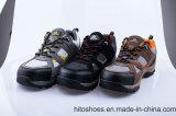 Наиболее востребованных скалолазание стили рабочая обувь (HD. 0816)