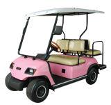 Amusent公園のための4人の乗客の電気自動車