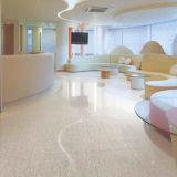 60*60cm Ceramic Portare-resistente Black Flooring Tiles da vendere