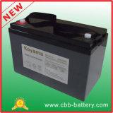 110Ah 12V de ciclo profundo de la batería AGM para RV Movilidad / Médico