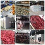 Machine industrielle industrielle de déshydrateur de fruit de déshydrateur de nourriture de dessiccateur de plateau