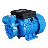 Elektrische Trinkwasser-Pumpe Dbseries