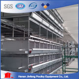 3-8 gaiola da galinha das séries para o equipamento agrícola do equipamento das aves domésticas da venda para o aumento do pássaro