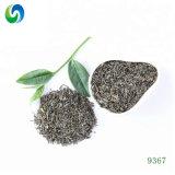 Chinois Chunmee thé biologique 9367 Feuille de Thé vert Thé bon marché