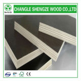 18mm Outdoor Usage Black oder Brown Film Faced Plywood