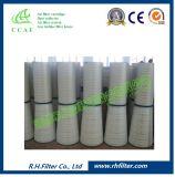 Cartuccia sintetica di filtro dell'aria di Ccaf per Cfs