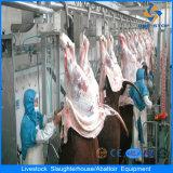 Linha de equipamentos de abate de gado máquina de matadouro