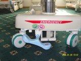 Thr-Eb5301 vijf-Functie het Elektrische Bed Op hoog niveau van het Ziekenhuis