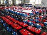 Hot 4HP Petit unique de l'Inde cylindres refroidi à l'eau de moteur diesel (R170A)